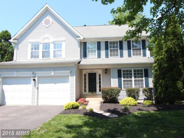 46391 Hampshire Station Drive, Sterling, VA 20165 (#LO10237253) :: Advance Realty Bel Air, Inc