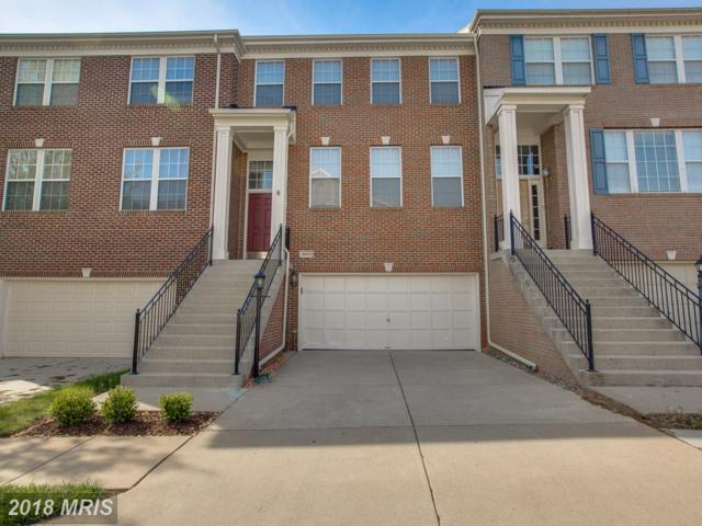 46144 Aisquith Terrace, Sterling, VA 20165 (#LO10237386) :: The Greg Wells Team