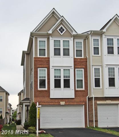 21768 Mears Terrace, Ashburn, VA 20147 (#LO10239259) :: The Greg Wells Team