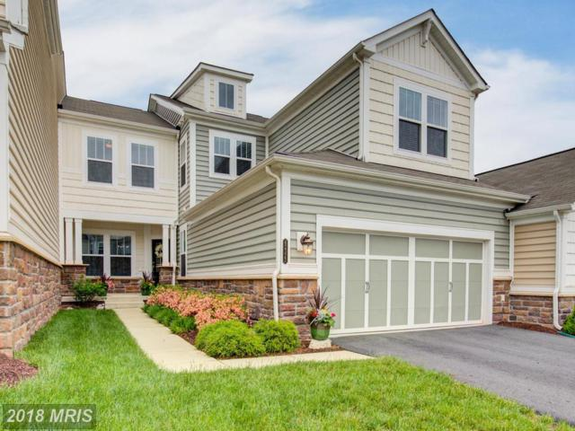 42322 Christophers View Terrace, Ashburn, VA 20148 (#LO10242783) :: Advance Realty Bel Air, Inc