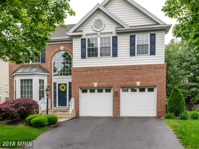 25421 Chicama Drive, Chantilly, VA 20152 (#LO10242848) :: Circadian Realty Group