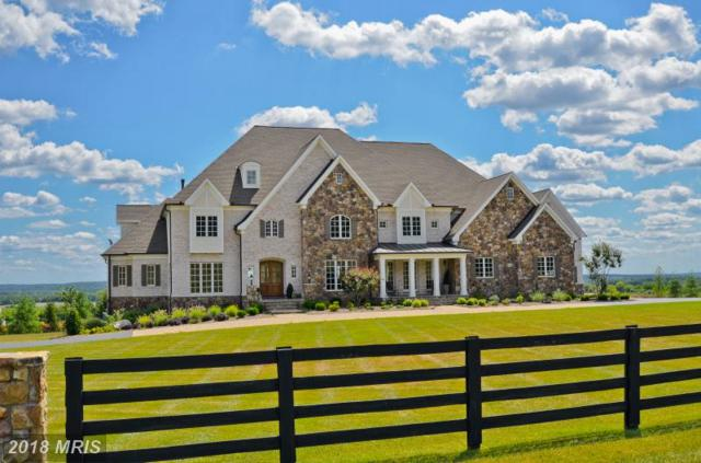 15470 Montresor Road, Leesburg, VA 20176 (#LO10242865) :: The Maryland Group of Long & Foster