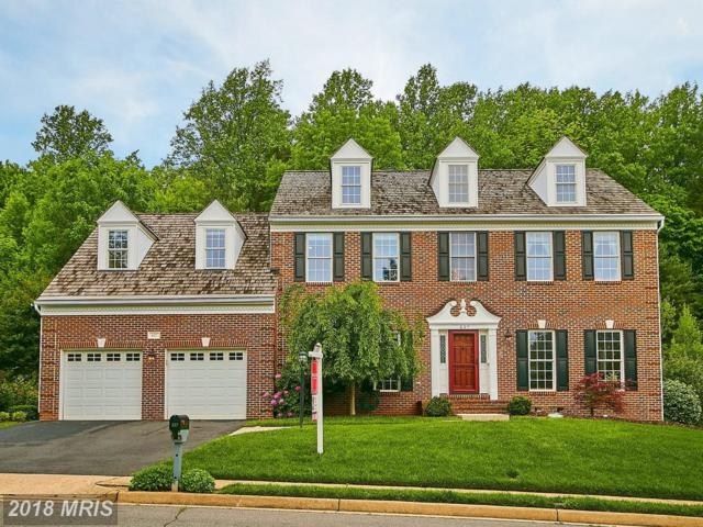 627 Meade Drive SW, Leesburg, VA 20175 (#LO10243538) :: Advance Realty Bel Air, Inc
