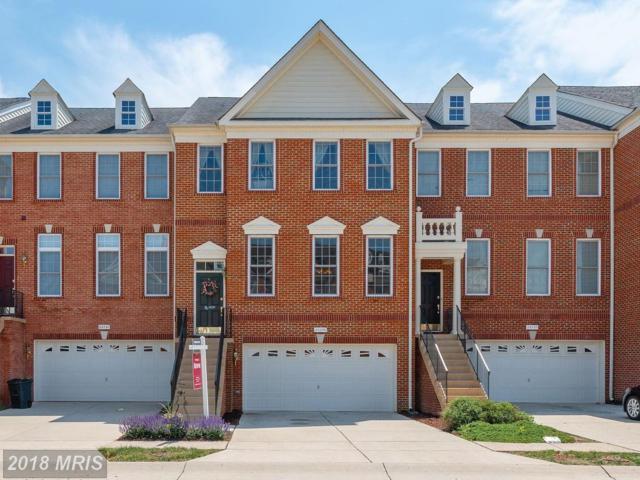 25259 Bald Eagle Terrace, Chantilly, VA 20152 (#LO10243638) :: RE/MAX Executives