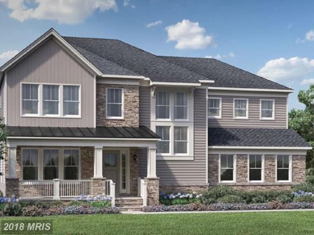 41325 Lavender Breeze Circle, Aldie, VA 20105 (#LO10243792) :: Circadian Realty Group
