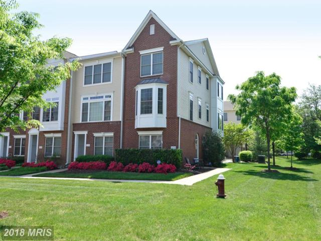 25120 Omaha Terrace, Chantilly, VA 20152 (#LO10244267) :: Circadian Realty Group