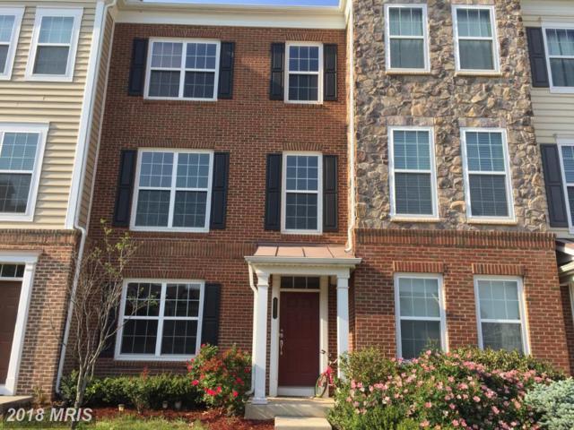 43610 Mckay Terrace, Chantilly, VA 20152 (#LO10244597) :: RE/MAX Executives