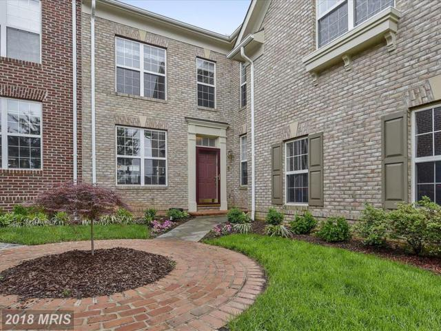 18480 Lanier Island Square, Leesburg, VA 20176 (#LO10244613) :: Labrador Real Estate Team