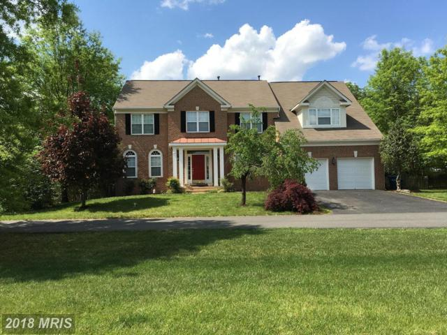 43560 Fieldsman Lane, Chantilly, VA 20152 (#LO10244675) :: Colgan Real Estate