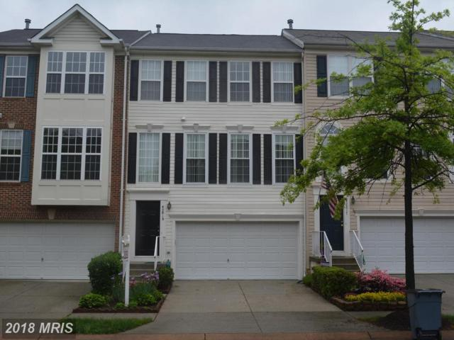 42819 Shaler Street, Chantilly, VA 20152 (#LO10244934) :: Colgan Real Estate
