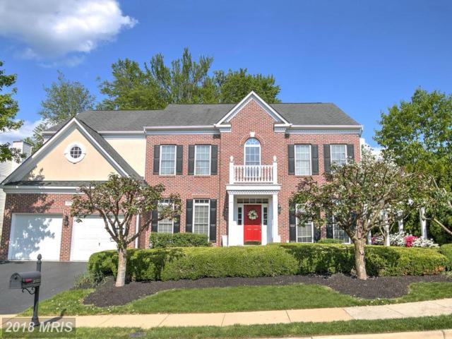 20338 Cliftons Point Street, Sterling, VA 20165 (#LO10245130) :: Advance Realty Bel Air, Inc