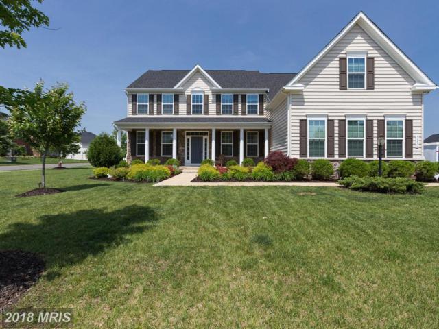 42486 Fawn Meadow Place, Chantilly, VA 20152 (#LO10245164) :: RE/MAX Executives