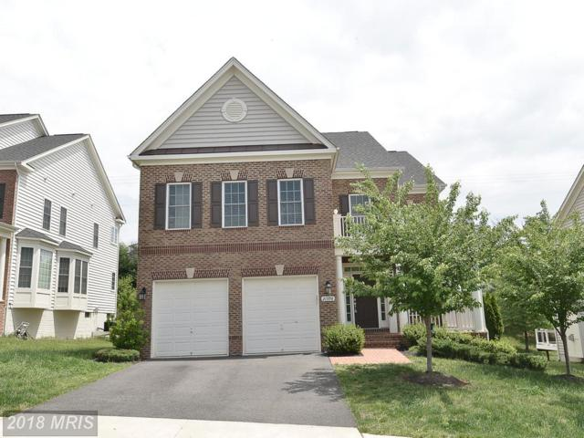21398 Fairhunt Drive, Ashburn, VA 20148 (#LO10245791) :: RE/MAX Executives