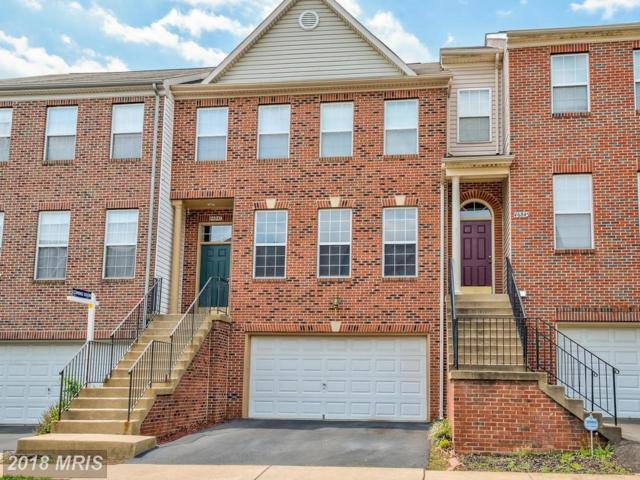 46847 Burning Branch Terrace, Sterling, VA 20164 (#LO10245798) :: The Withrow Group at Long & Foster