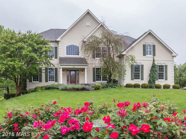 43408 Blantyre Court, Ashburn, VA 20147 (#LO10245891) :: RE/MAX Executives