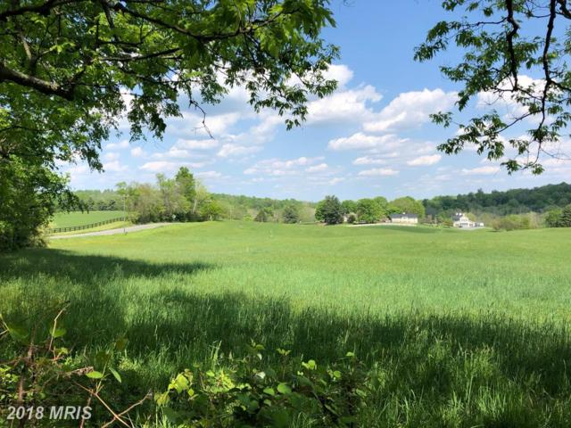 Sally Mill Road, Middleburg, VA 20117 (#LO10246164) :: Frontier Realty Group
