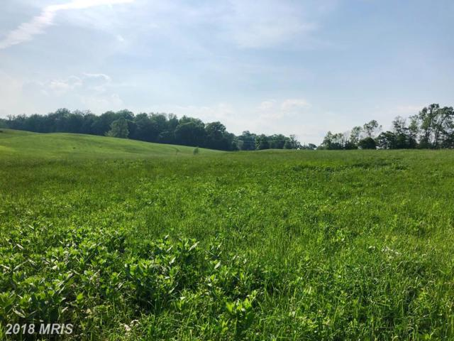 Sally Mill Road, Middleburg, VA 20117 (#LO10246178) :: Frontier Realty Group