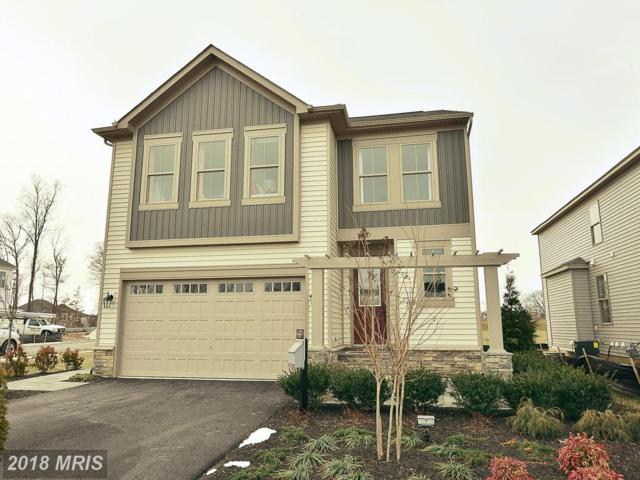24823 Somerby Drive, Chantilly, VA 20152 (#LO10246475) :: Frontier Realty Group