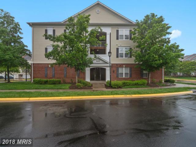 42435 Hollyhock Terrace #102, Ashburn, VA 20148 (#LO10247151) :: Circadian Realty Group