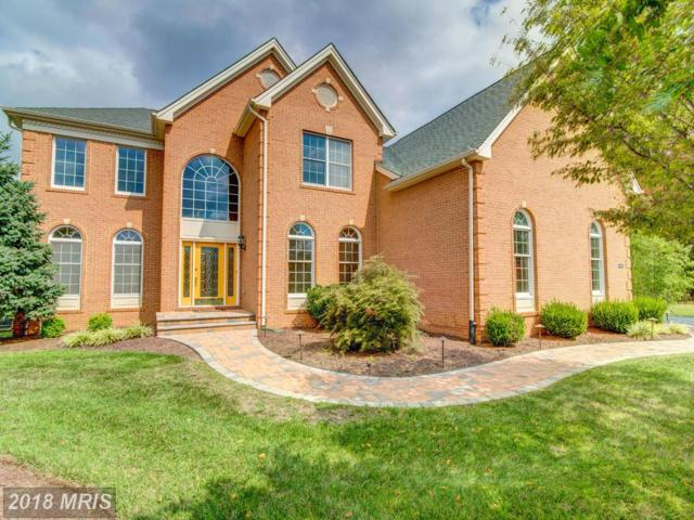 43446 Freeport Place, Sterling, VA 20166 (#LO10248042) :: Jim Bass Group of Real Estate Teams, LLC