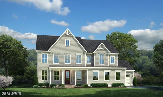 24998 Dahlia Manor Place, Aldie, VA 20105 (#LO10248081) :: Circadian Realty Group