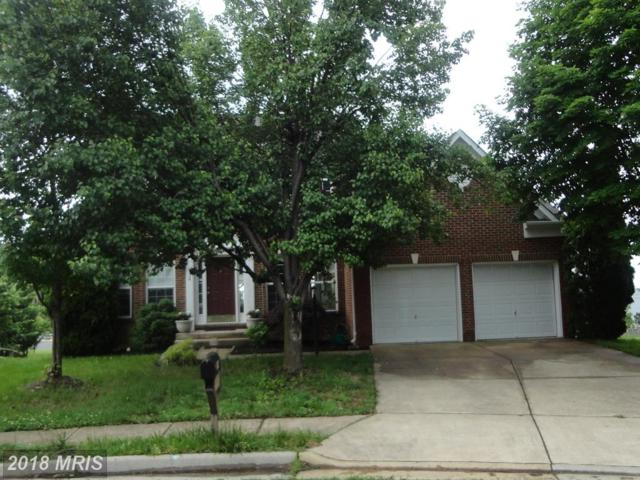 714 Mount Holly Place NE, Leesburg, VA 20176 (#LO10248645) :: Bic DeCaro & Associates