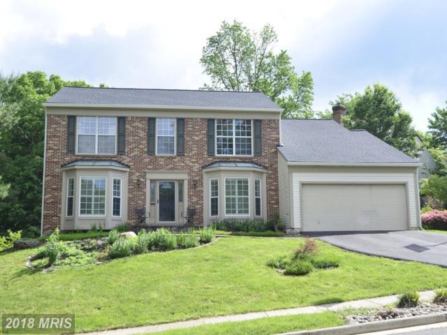 10835 Monticello Drive, Great Falls, VA 22066 (#LO10248990) :: Zadareky Group/Keller Williams Realty Metro Center