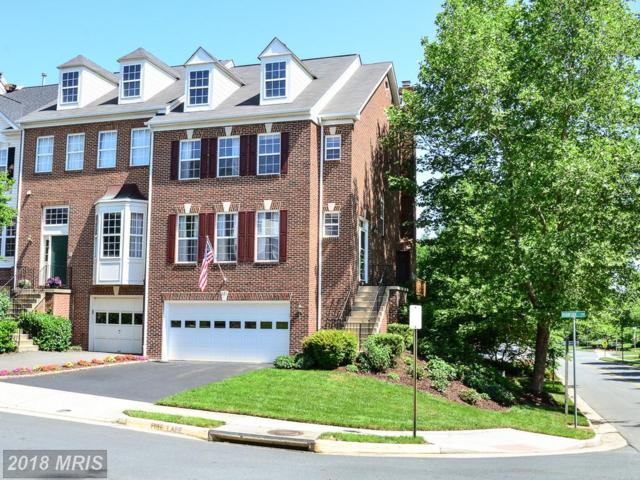 621 Burnside Terrace SE, Leesburg, VA 20175 (#LO10249955) :: RE/MAX Cornerstone Realty