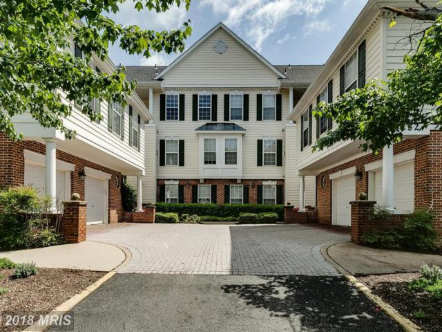 25252 Riffleford Square #302, Chantilly, VA 20152 (#LO10250332) :: Labrador Real Estate Team