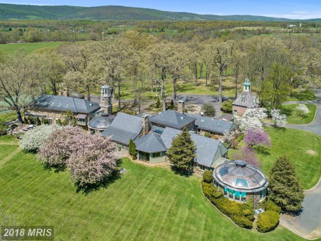 33807 Archbold Lane, Upperville, VA 20184 (#LO10250612) :: Colgan Real Estate