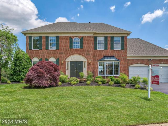 43789 Woodworth Court, Ashburn, VA 20147 (#LO10250646) :: Advance Realty Bel Air, Inc