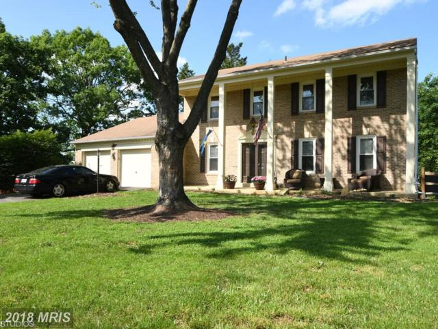 302 Linden Court, Sterling, VA 20164 (#LO10250674) :: Advance Realty Bel Air, Inc