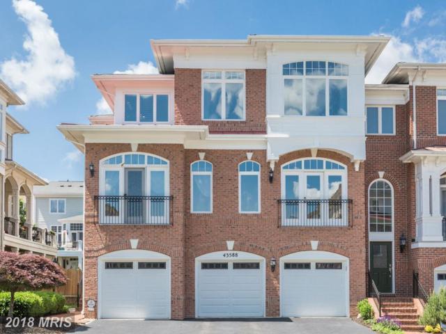 43588 Purple Aster Terrace, Leesburg, VA 20176 (#LO10250909) :: Bic DeCaro & Associates