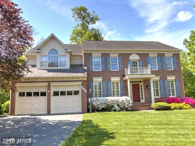 47553 Griffith Place, Potomac Falls, VA 20165 (#LO10250939) :: The Greg Wells Team