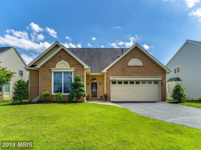 44001 Bruceton Mills Circle, Ashburn, VA 20147 (#LO10251763) :: Circadian Realty Group