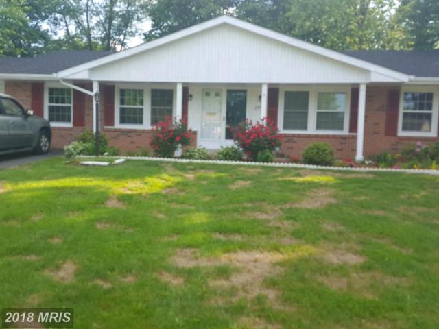 203 Grayson Place, Sterling, VA 20164 (#LO10252125) :: The Putnam Group