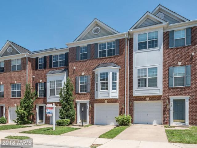 234 Hawks View Square SE, Leesburg, VA 20175 (#LO10252157) :: The Putnam Group