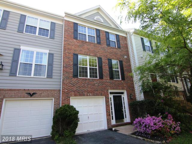 25540 Heyer Square, Chantilly, VA 20152 (#LO10252239) :: Labrador Real Estate Team