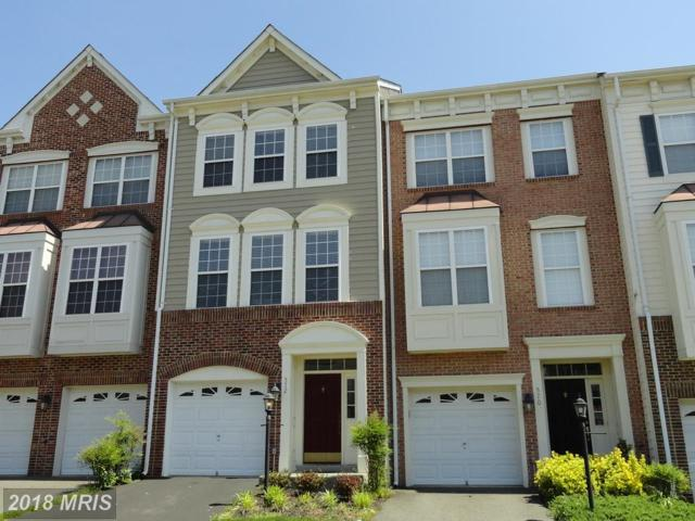 572 Edmonton Terrace NE, Leesburg, VA 20176 (#LO10252310) :: The Putnam Group