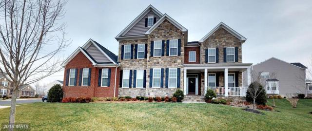 21492 Great Sky Place, Broadlands, VA 20148 (#LO10252489) :: The Greg Wells Team