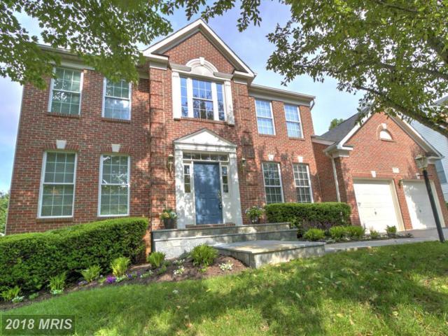 20354 Cliftons Point Street, Potomac Falls, VA 20165 (#LO10256983) :: Great Falls Great Homes