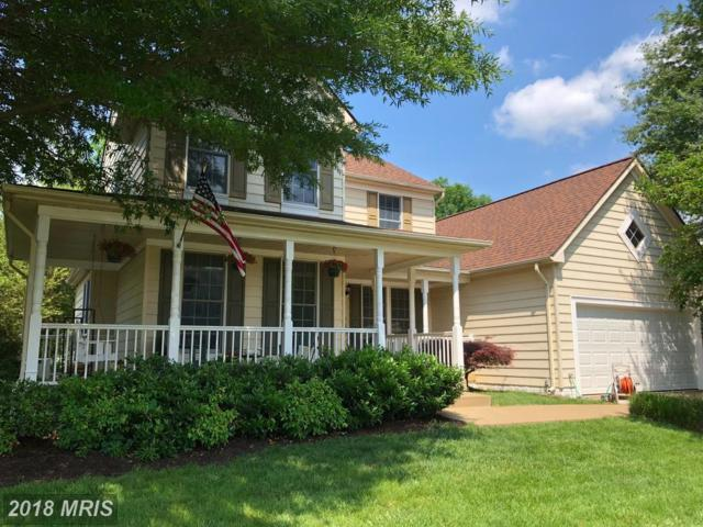 46612 Hampshire Station Drive, Sterling, VA 20165 (#LO10257351) :: The Withrow Group at Long & Foster