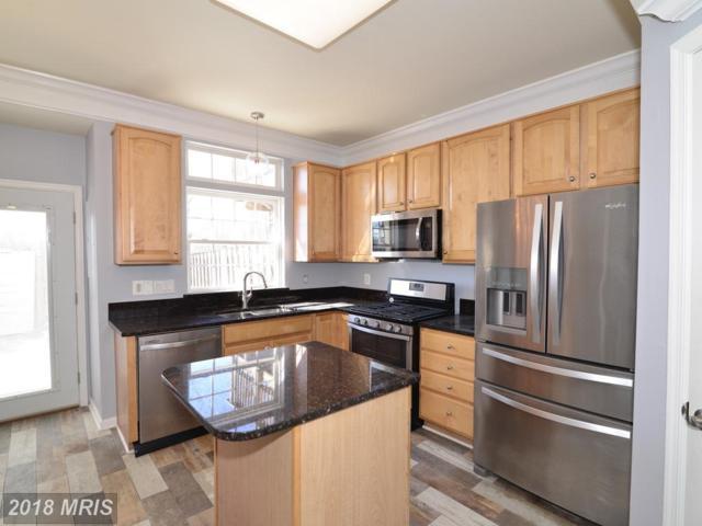44237 Litchfield Terrace, Ashburn, VA 20147 (#LO10258020) :: LoCoMusings