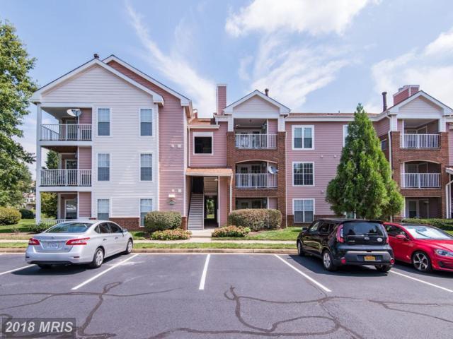 20950 Timber Ridge Terrace #202, Ashburn, VA 20147 (#LO10258161) :: Jim Bass Group of Real Estate Teams, LLC