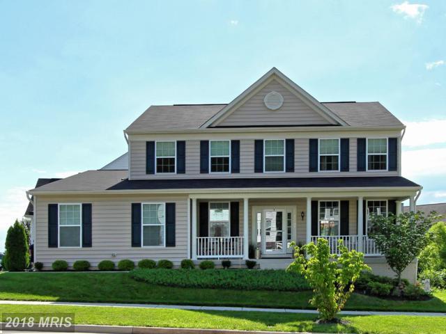 35501 Hudson Street, Round Hill, VA 20141 (#LO10261217) :: LoCoMusings