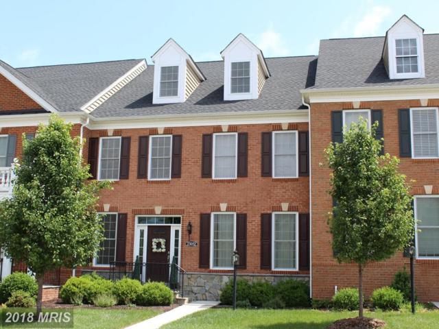23052 Sunbury Street, Ashburn, VA 20148 (#LO10261444) :: LoCoMusings