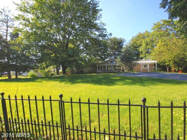 205 Ken Culbert Lane, Purcellville, VA 20132 (#LO10263262) :: LoCoMusings