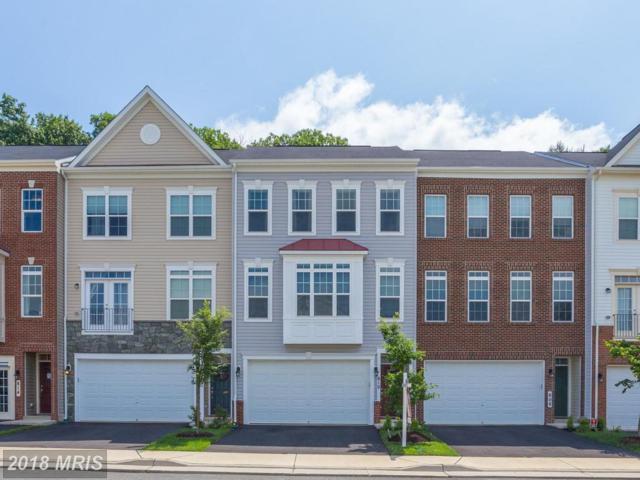 810 Savile Row Terrace, Purcellville, VA 20132 (#LO10263276) :: The Gus Anthony Team