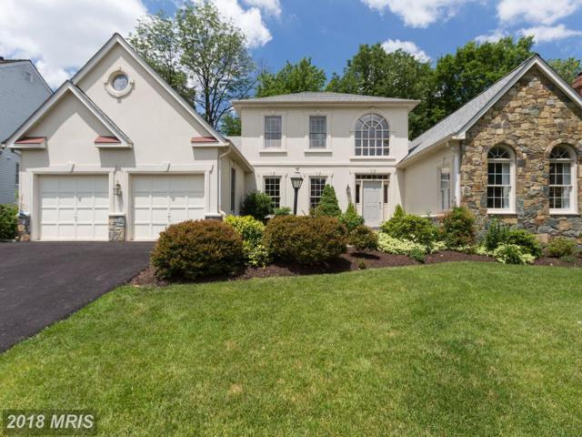 43318 Butterfield Court, Ashburn, VA 20147 (#LO10263619) :: Jim Bass Group of Real Estate Teams, LLC