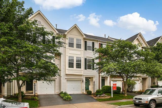 46800 Vermont Maple Terrace, Sterling, VA 20164 (#LO10264357) :: The Withrow Group at Long & Foster